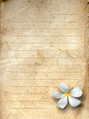 Old grunge letter paper — Stock Photo