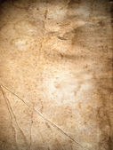 Texture of Old paper — Stock Photo