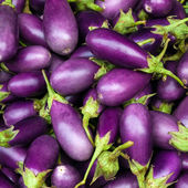 Aubergine lila — Stockfoto