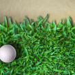 Golf Ball on Green Grass — Stock Photo #4070738