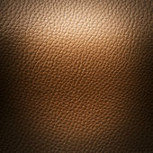 Light Brown Leatherette — Stock Photo