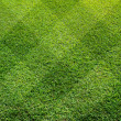 Stock Photo: Top view of Beautiful fourty five degree square tone lawn