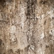 Cement plaster wall - Stock Photo