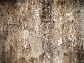 Cement plaster wall — Stock Photo