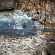 Stock Photo: Texture of grunge old wood