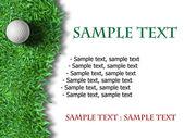 Bílý golfový míček na zelené trávě — Stock fotografie