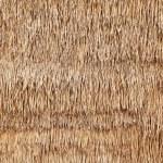 Dry grass background — Stock Photo #5255969