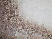 Stary mur brązowy granica — Zdjęcie stockowe
