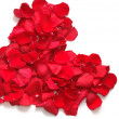 Heart from petals of red roses — Stockfoto
