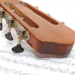 Fingerboard of old guitar under leaf with notes — 图库照片