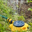 Yellow sprinkler irrigating garden — Stock Photo