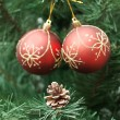 Stock Photo: Cone and two red balls on Christmas-tree