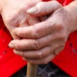 Old woman hands leans on walking stick - Stock Photo