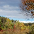 Stock Photo: Autumn lanscape - weather changing