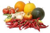 Harvest. Fresh ripe vegetables: tomatoes, pumpkins, onion, peppe — Stock fotografie
