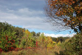 Autumn lanscape - weather changing — Stock Photo