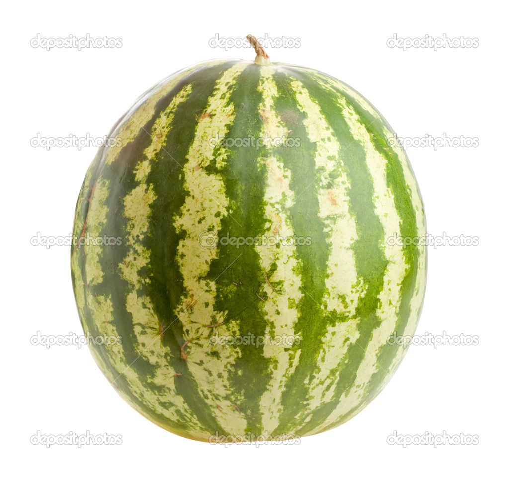 Ripe green watermelon  isolated on white background — Stock Photo #4848554