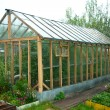 Greenhouses - Stock Photo