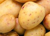 Potatoes close-up — Stock Photo