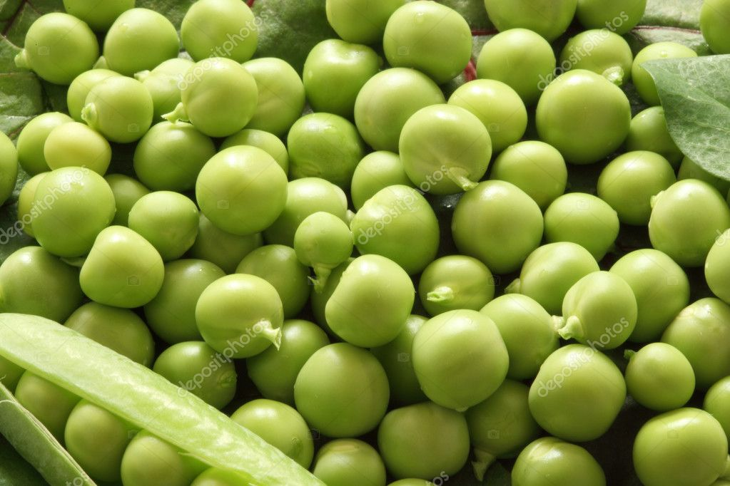 Close-up of fresh green pea. Natural shooting  Stock Photo #4954657