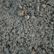 Texture cement — Stock Photo