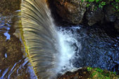Freshwater stream — Stock Photo