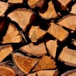 Stock Photo: Firewood larch