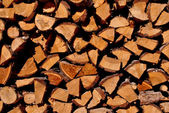 Firewood larch — Stock Photo