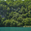 Plitvice Lakes National Park — Stock Photo #4241567