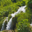 Plitvice Lakes National Park — Stock Photo