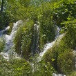 Plitvice Lakes National Park — Stock Photo #4241602