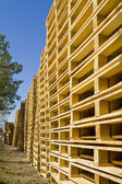 Wooden Shipping Pallets — 图库照片
