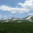 Stock Photo: Alpine meadows