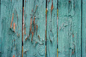 Cerca de madeira verde antiga — Foto Stock