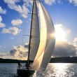 Sailing yacht in back lit — Stockfoto