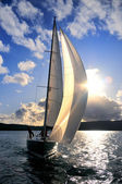 Sailing yacht in back lit — Stock Photo