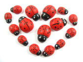 Ladybug heart — Stock Photo