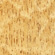 Birch (wood texture) — Stock Photo