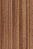 Walnut (wood texture) — Stock Photo