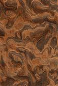 De walnoot wortel zagen (houtstructuur) — Stockfoto