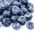 Blueberries on white — Stock Photo #5116633