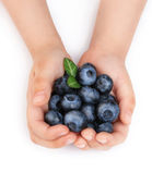 Girls hands holding ripe blueberries — Stock Photo