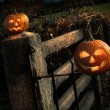 Two Halloween pumpkins sitting on fence — Stock Photo