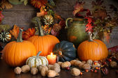 Still life harvest decoration for Thanksgiving — Stockfoto