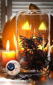 Spiders in glass container for Halloween — Stock fotografie
