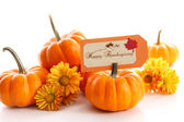 Small pumpkins with chrysanthemums and card — Stock Photo