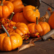 Small pumpkins with wood bucket - Stok fotoğraf