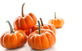 Miniature orange pumpkins against white — Stock Photo