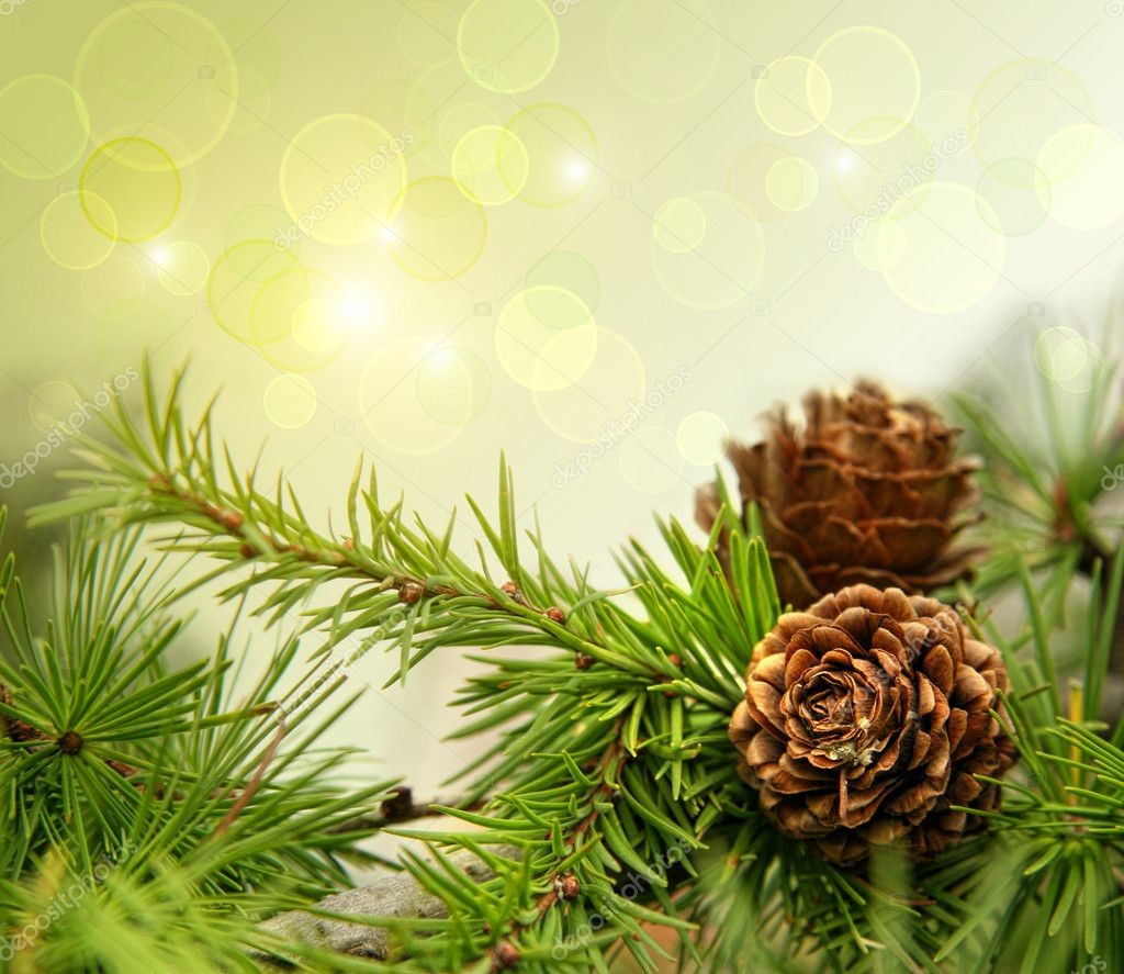 Pine cones on branches with holiday background  Foto Stock #4175464