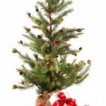 beyaz üzerine kırmızı kurdele hediyeler ile küçük Noel ağacı — Stok fotoğraf